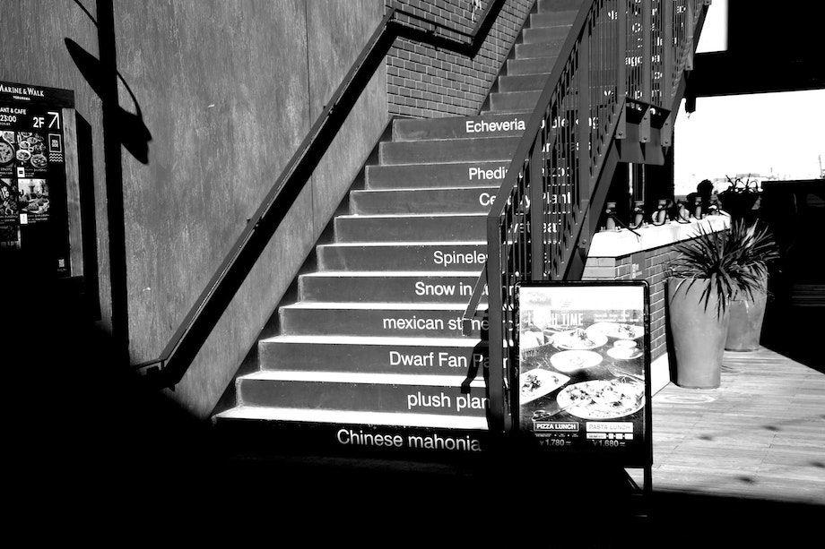 image file、マリンアンドウォーク、階段