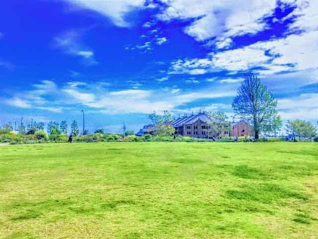 芝生エリアから見える赤レンガ倉庫の画像