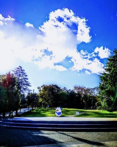 アメリカ山庭園