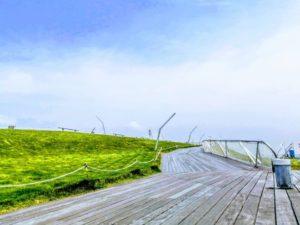 大さん橋の芝生