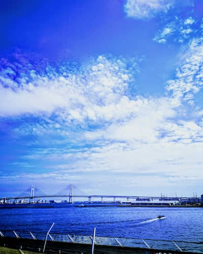 大さん橋の画像
