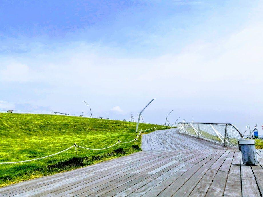 横浜おすすめジョギングコース、大さん橋屋上デッキの芝生の画像