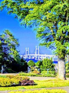 大佛次郎記念館空の景色