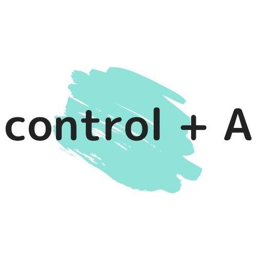 control + Aの図解の画像
